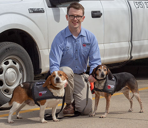 Bed Bug Detection Canines