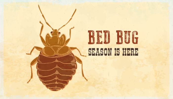 Preferred Pest Control, Summer Is Here And So Are The Bed Bugs