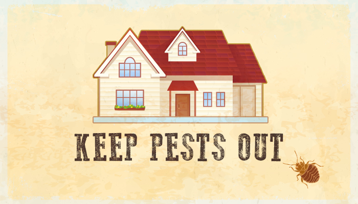 Preferred Pest Control, Bed Bug Removal