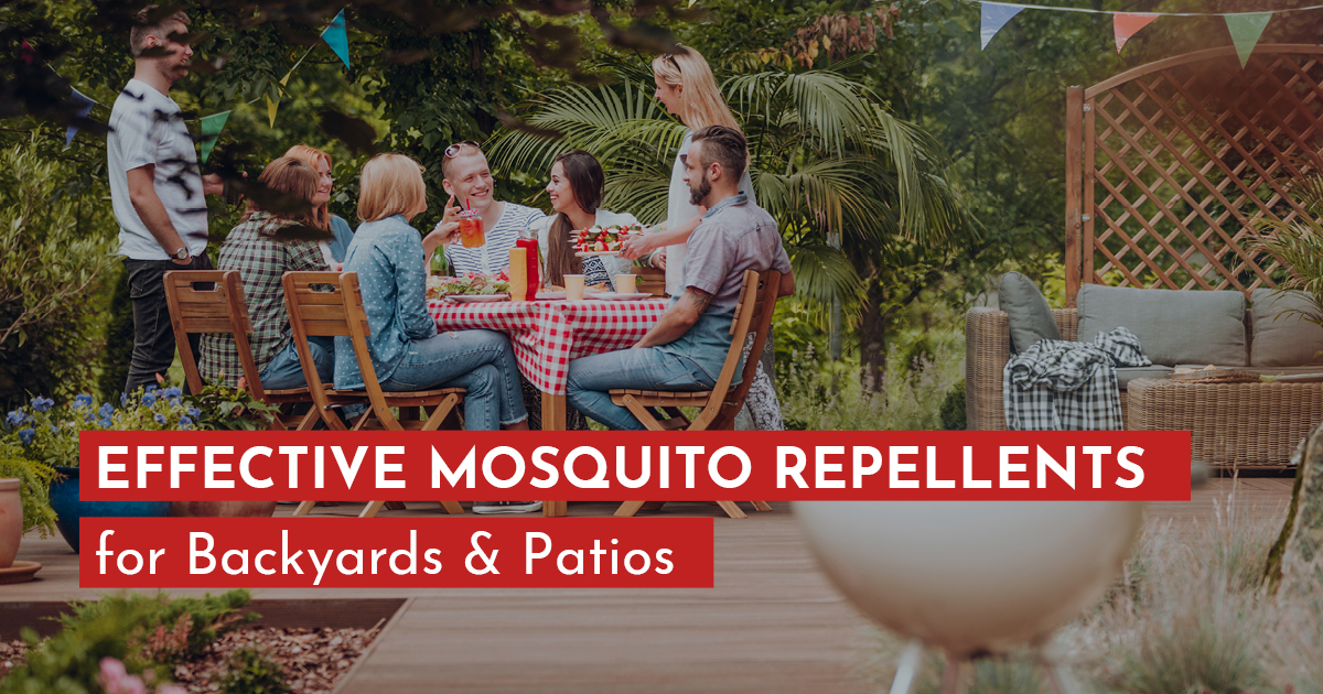 best mosquito repellent for patio.