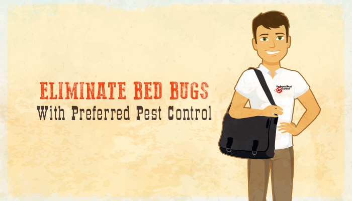 bed bug removal with preferred pest