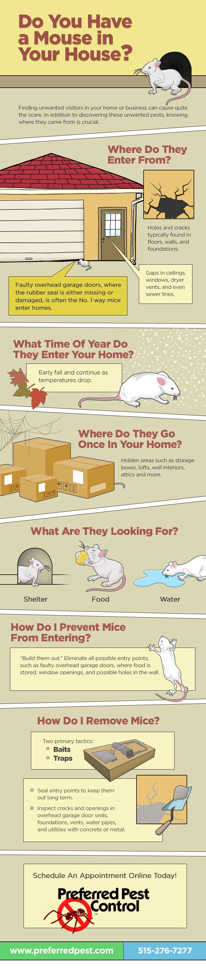 Mice, Preferred Pest Control, Mouse in Your House, Iowa Pest Control