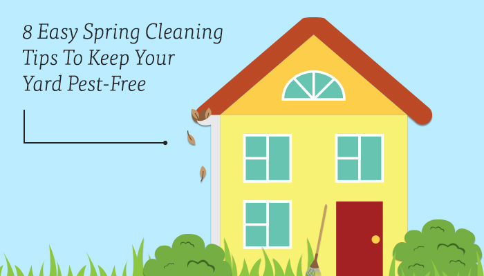 Spring Cleaning Tips to Keep Your Yard Pest-Free
