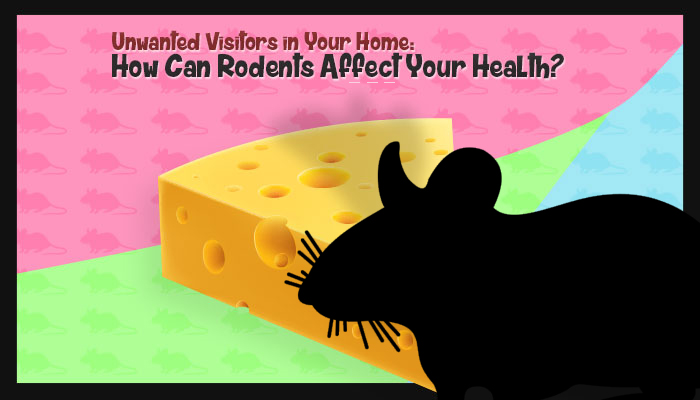 How Can Rodents Affect Your Health