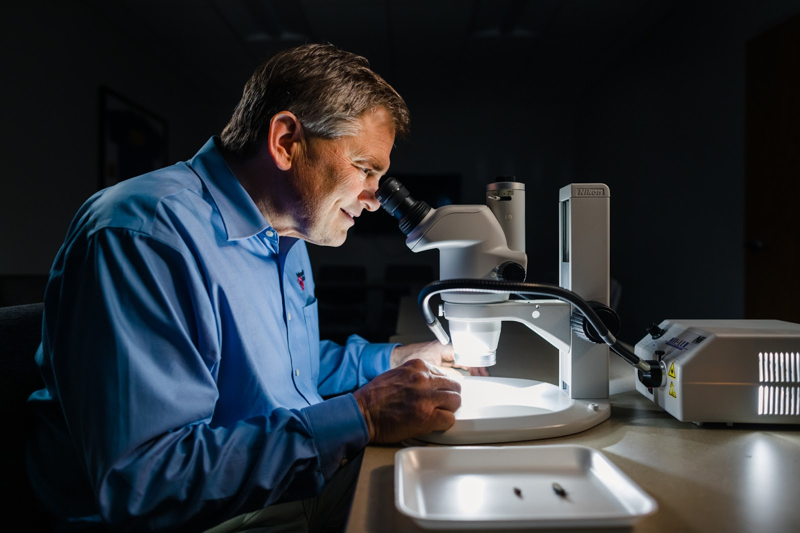 entomologist looking through microscope to study bugs.