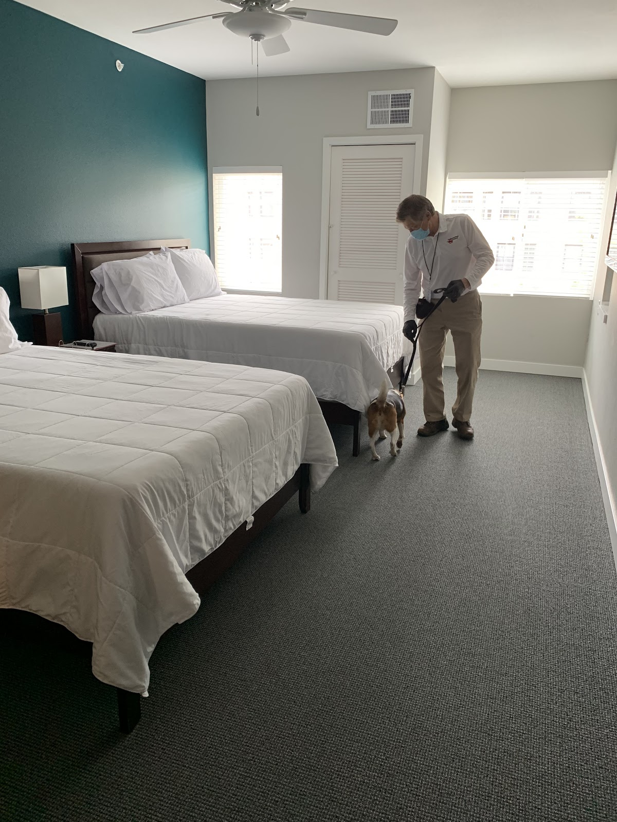 Bed bug detection dog and exterminator performing search